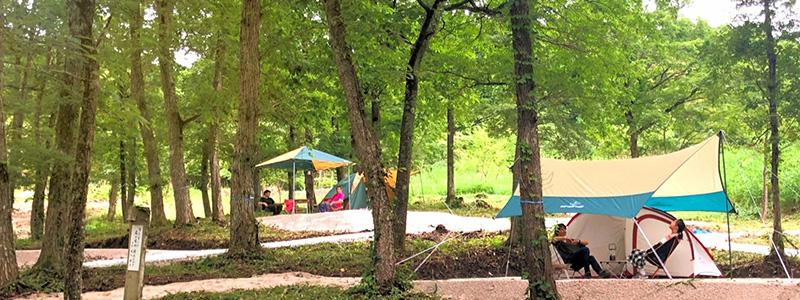 モクモクキャンプのテントサイト